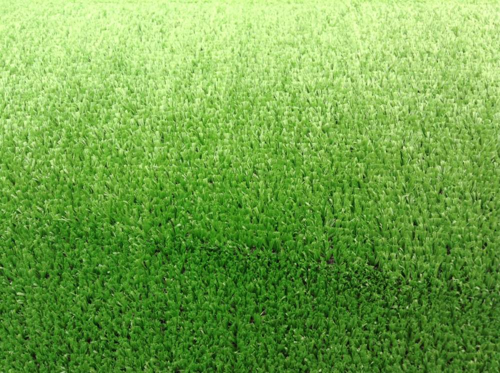 Buy Lawn for soccer