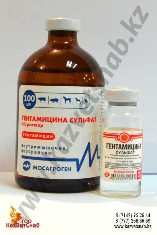 Buy Gentamycini sulfas of 4% solution for veterinary science of 10 ml