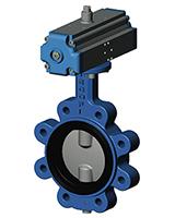 Межфланцевый дисковый поворотный затвор с резьбовыми проушинами VP3649-02