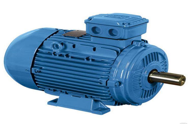 AIMU series electric motors, execution of 1001