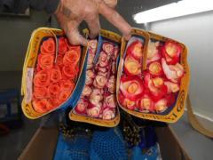 Flowers wholesale