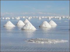 Соль техническая, поваренная