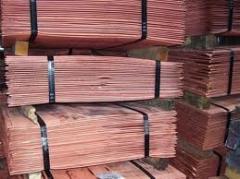 Cathodes copper M0K,M00K state standard