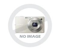 Гидроцилиндр HC2G-160/110W-250-K3-0-11/20