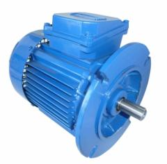 Electric motor asynchronous flange