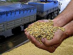 Grain wholesale