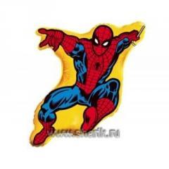 Sphere a folgirovanny F Figure 10 Spider-Man on