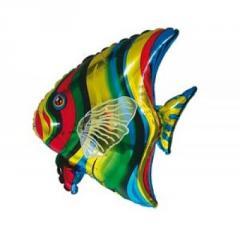 Sphere folgirovanny F Figure 8 Fish tropical FM
