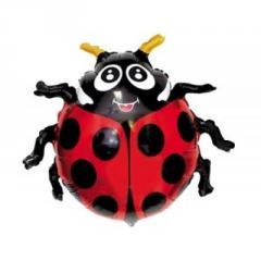 Sphere folgirovanny F Figure 9 Ladybug of FM