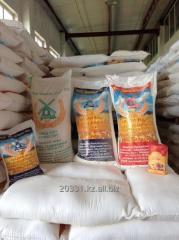 من  - Export and wholesale