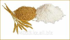 Flour for export from Kazakhstan