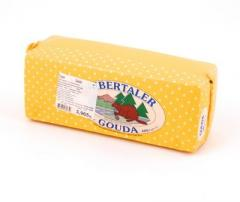 Cheese of Gouda Bibertaller