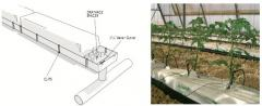 Systems of drop watering of greenhouses and