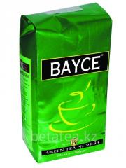 Bayce Green 95-33