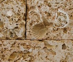 Limestone construction, Shell rock