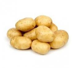 Немецкий картофель оптом
