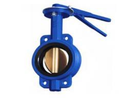 Затвор дисковый Чуфарово, диаметр 50 мм
