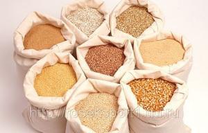 Семена Житняка