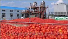 TOMATO PASTE WHOLESALE IN BARRELS FROM CHINA AND