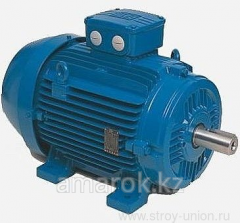 Electric motors of the DIN/IEC/CENELEC standard