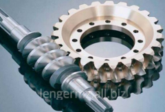 Leading shaft of a worm gear of joint stock