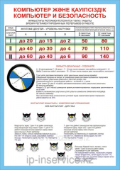 Poster Computer and safety of E.1.7