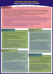 Poster Organization of Training of Safety of the