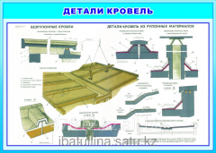 Poster Roof and materials E.29