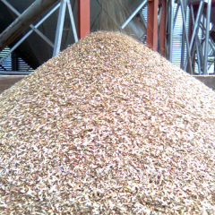 Grain waste