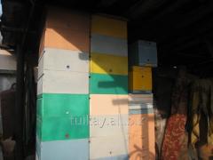 Foam a beehive Dadan, on 10 frames