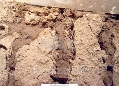 Clay for expor