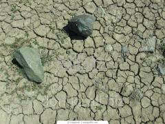 Глины и каолины из Казахстана