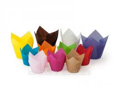 Form paper Tulip