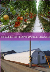 Теплицы, зернохранилище, склады