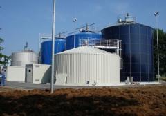 Биогазовые элетростанции, Биогазовые