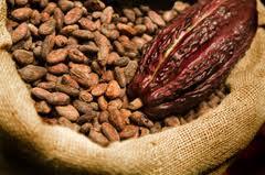 Cocoa 10/12 fat, Cocoa