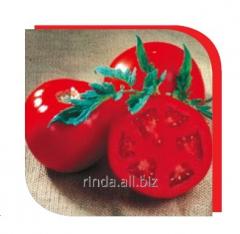 Tomato seeds determinant Sanrayz F1