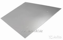 Экран защитный люкс 980*600 нерж.зерк. 0,5