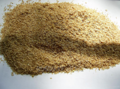 Grain for Expor