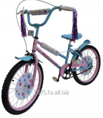 The children's bicycle Zhastar for girls