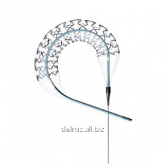 Coronary stent on system of delivery of fast