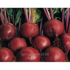 Seeds beet. Bonel