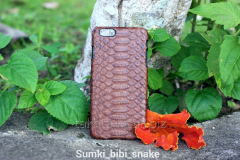 Covers on the cell phone from leather of python
