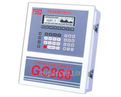 Расходомер с накладными датчиками GC868