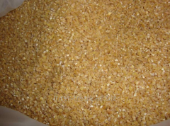 Grain wastes Atbasar scattering, 1