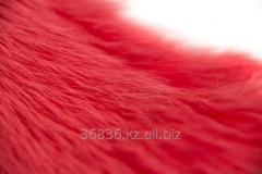 Fur of raccoon (Turkey). Color: coral 003
