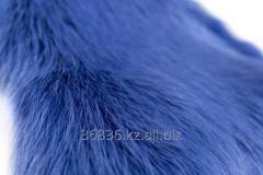 Fur of raccoon (Turkey). Color: blue 007