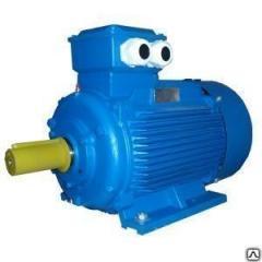 ACORUS electric motor 250 M4