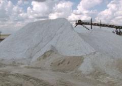Salt technical in Astana