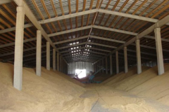 Warehouse for grain storage
